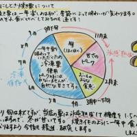 焼き栗 図